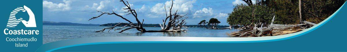 Coochiemudlo Island Coastcare
